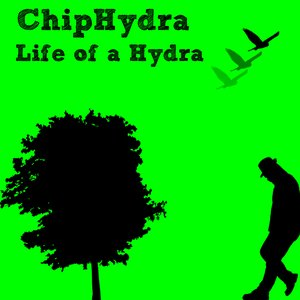 Life of a Hydra