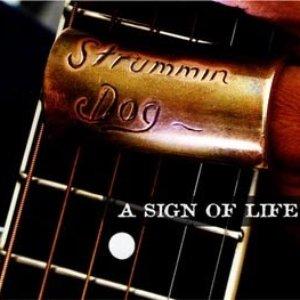 Avatar for Strummin Dog