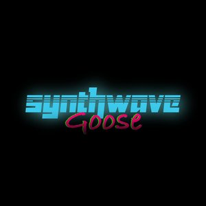 Avatar for Synthwave Goose