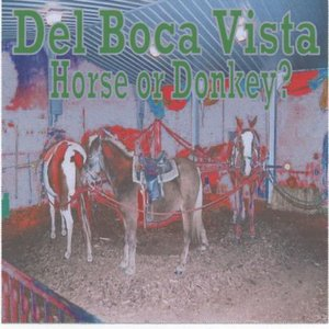 Bild für 'Del Boca Vista'