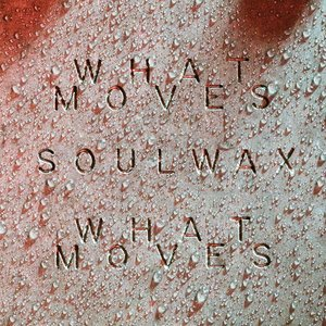 What Moves (Soulwax Remix)