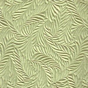 Lichens & Moss