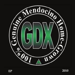 EP 2010