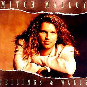 Ceilings & Walls