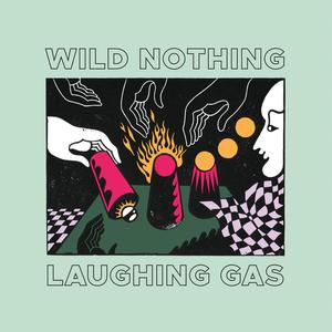 Wild Nothing, Foyer