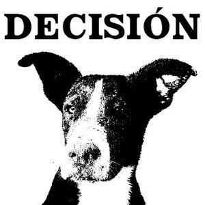 Avatar for Decisión