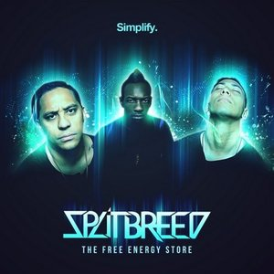 The Free Energy Store