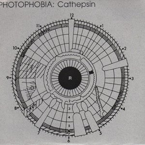 Cathepsin