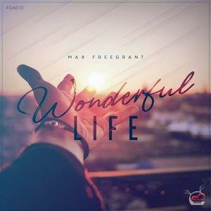 Wonderful Life (Artist Album)