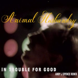 In Trouble for Good (Andy J Spence Remix)