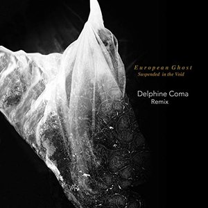 Suspended in the Void (Delphine Coma Remix) - Single
