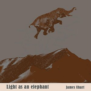 Light As An Elephant