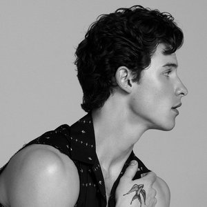 Avatar di Shawn Mendes