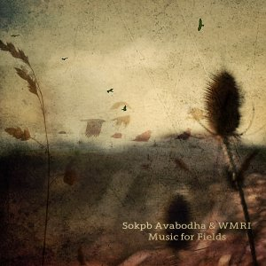 Music for Fields