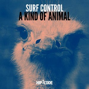 A Kind of Animal