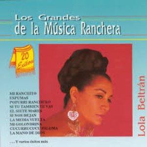 Image for 'Los Grandes de la Musica Ranchera'