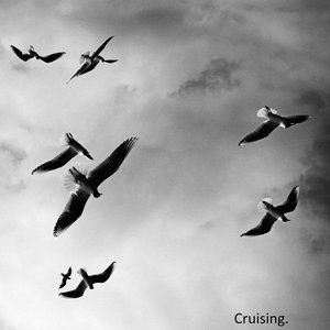 Cruising.