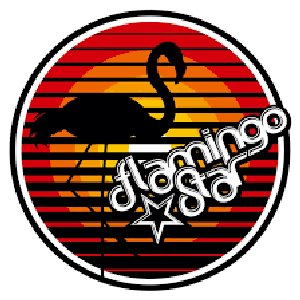 Avatar di Flamingo Star
