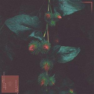Splintered Arms (Seven Am Remix)