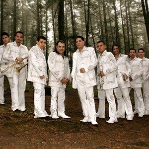 Avatar for Banda Pequeños Musical