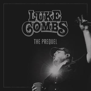 Luke Combs - Beer Never Broke My Heart