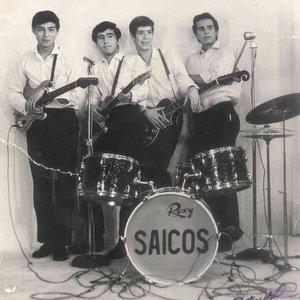 Image for 'Los Saicos'