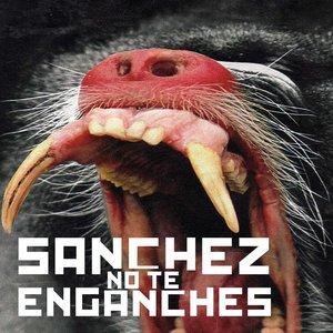 Avatar de Sánchez No Te Enganches