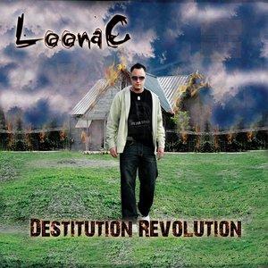 Destitution Revolution
