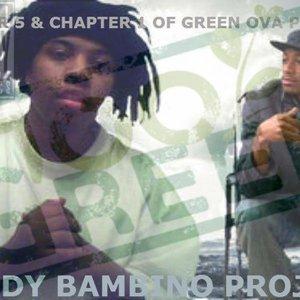 The Shady Bambino Project