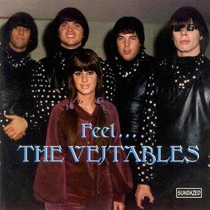 Feel... The Vejtables