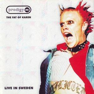 The Fat of Kåren: Live in Sweden