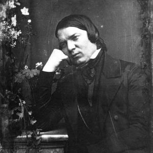 Robert Schumann photo provided by Last.fm