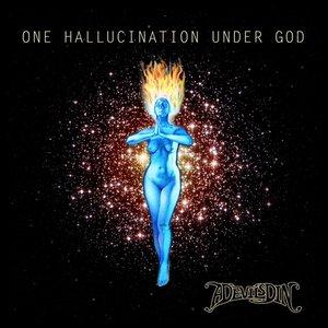 One Hallucination Under God
