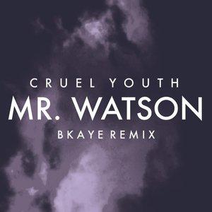 Mr. Watson (BKAYE Remix)