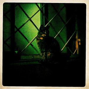 Noche en Ortigia - Single