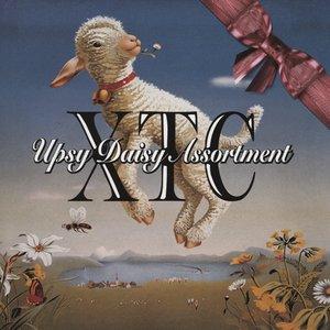 Upsy Daisy Assortment