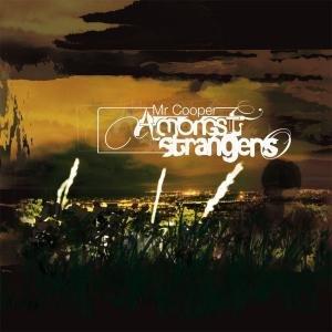 Amongst Strangers (Vinyl Version)