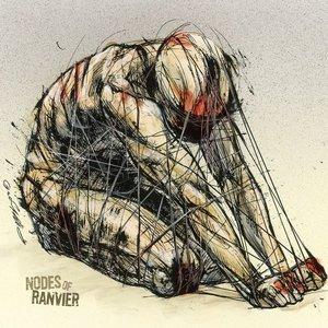 Nodes Of Ranvier