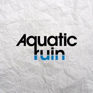 Image for 'Aquatic Ruin'