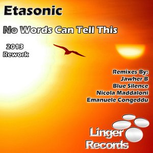 No Words Can Tell This (2013 Rework)