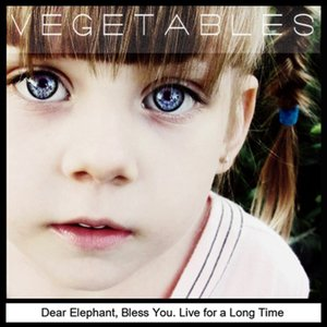 Dear elephant, bless you. Live for a long time