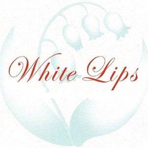 WHITE-LIPS 的头像