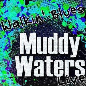 Walkin' Blues (Live)