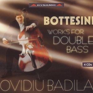 Bild für 'Bottesini: Double Bass Music (Badila) (4Cd Set)'