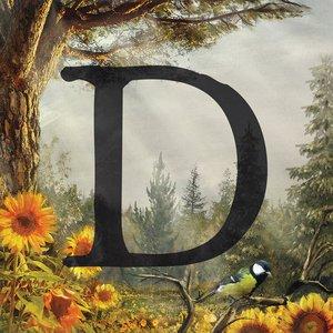 D - Single