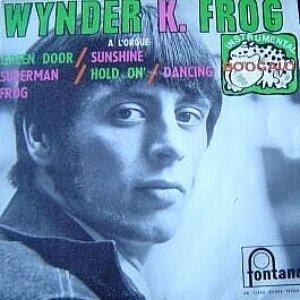 Avatar for Wynder K. Frog