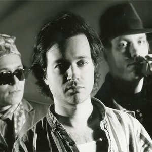 Avatar for Violent Femmes