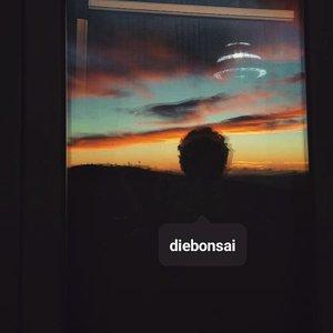 Avatar di Diebonsai