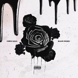Bild für 'Black Roses'