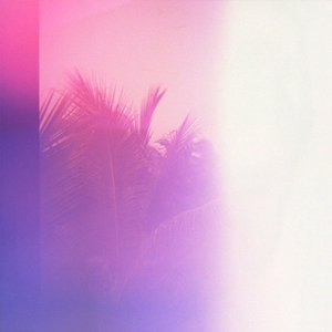Hawaii (Niva Remix) - Single